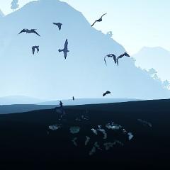 魚群と海鳥