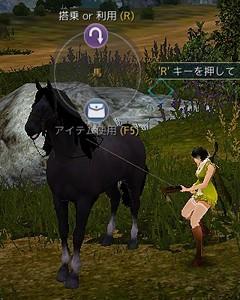 5世代馬~馬体が黒っぽく足首のみ白