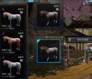 野生馬の捕獲育成には馬牧場~厩舎拡張