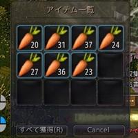 神秘な栽培用ニンジン成熟