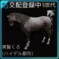 【馬交配#3】5世代野生馬Lv.30♂ × 5世代野生馬Lv.21♀
