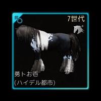 【馬交配#36】5世代野生馬Lv.30♂ × 6世代馬Lv.24♀ ⇒ 7世代♂
