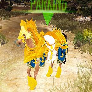ラル・アシヘン馬具セットを装着した馬