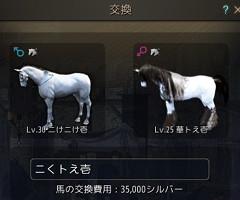 交換34親馬