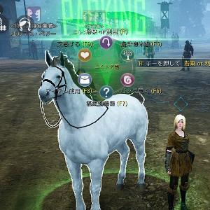 【馬交換#34】4世代馬Lv.30♂ × 7世代Lv.25♀ ⇒ 7世代白馬♀
