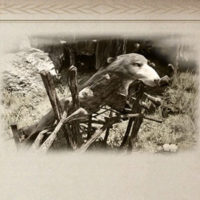 イゴール・バルタリの冒険日誌2章