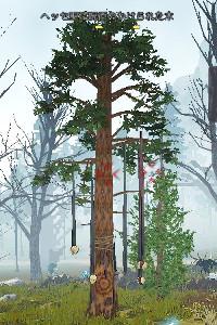 「ヘッセ聖域呪術のかけられた木」の場所はココ