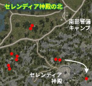 野生馬マップ セレンディア神殿の北
