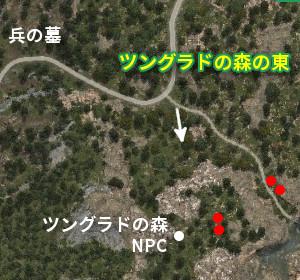 野生馬マップ ツングラドの森の東